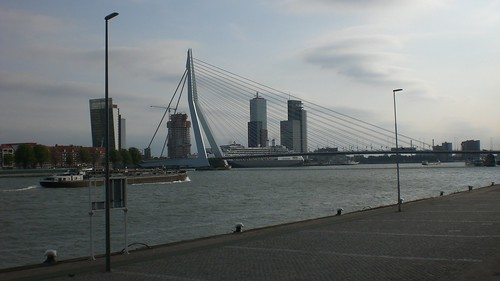 Erasmus bridge, Rotterdam