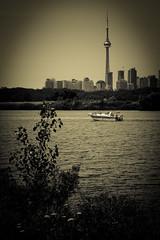 Toronto Skyline from Leslie Spit (kenyaya) Tags: park toronto ontario canada skyline canon rebel spit scene tommy scenary leslie xs thompsons 1000d