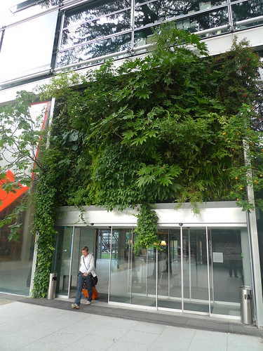mur végétal, Fondation Cartier (PARIS,FR75)