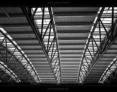 ROOF OVER MY HEAD (yART photography) Tags: roof blackwhite airport construction engineering hamgurg canondigitaleosrebelxsi unusualviewsperspectives sigma18200mm3563dcos yartphotography