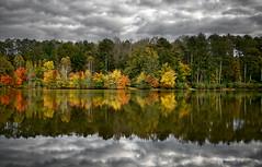 Autumn, Panola Mountain