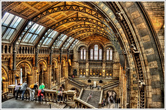 HDR - Natural History Museum III - .@.1100x733 (Pawel Tomaszewicz) Tags: uk greatbritain wallpaper sky building london colors beautiful architecture clouds photoshop canon buildings eos photo europe angle image photos wide picture wideangle ps images x palmtree 1200 naturalhistorymuseum 800 hdr muzeum fable hdri iphone pawel cs3 ipad londyn architektura budynek neatimage chmury muzea 3xp photomatix budynki greatphotographers wyspa wyspy eos400d 1200x800 photoshopcs3 hdrlondon tomaszewicz paweltomaszewicz