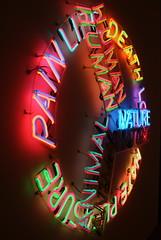 Bruce Nauman (drew*in*chicago) Tags: light color art love nature animal museum circle death rainbow neon artist glow contemporary human hate shape pleasure artinstituechicago drewinchicago