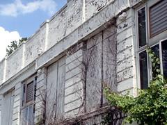the abandoned Washington School building (photo courtesy of AIA)