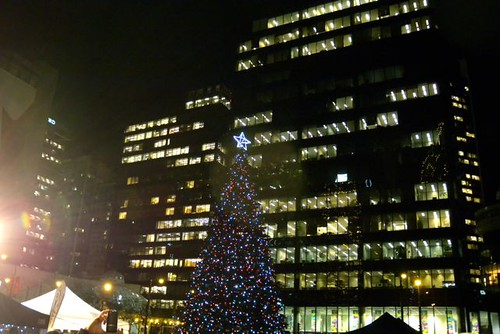 Amacon Christmas Tree on the Art Gallery lawn