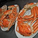 Tottori Crab