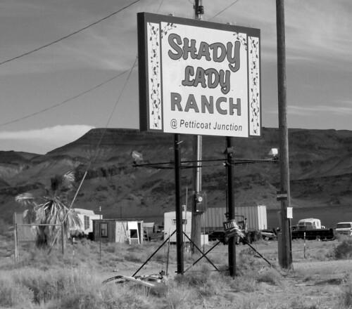 Shady Lady Ranch - Somewhere in Nevada