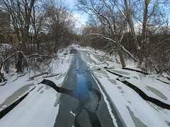 The ice and its cracks of the Red Cedar River. (Tim Kiser) Tags: 2015 20150112 capitalregion eastlansing eastlansingmichigan eastlansinglandscape img5748 inghamcounty inghamcountymichigan january january2015 lansingmetropolitanarea msu michigan michiganstate michiganstateuniversity michiganlandscape redcedarriver redcedarriverlandscape centralmichigan ice icebreakingup icylandscape icyriver icystream landscape midmichigan partiallyfrozen partiallyfrozenriver partiallyfrozenstream partlysunny river riverice rivericebreakingup riverlandscape shardsofice snow snowcoveredtreebranches snowylandscape snowytreebranches southcentralmichigan stream view winterlandscape woodedriverbanks woodedstreambanks