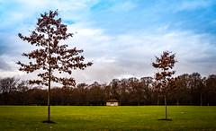 Solitary Hut (Khalid H Abbasi) Tags: hut solitary earlsdon coventry england tree nikon d90 outdoors nature landscape warmemorialpark