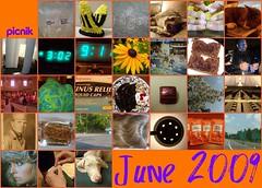June 2009 Mosaic