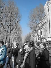 Parissien Chic 236
