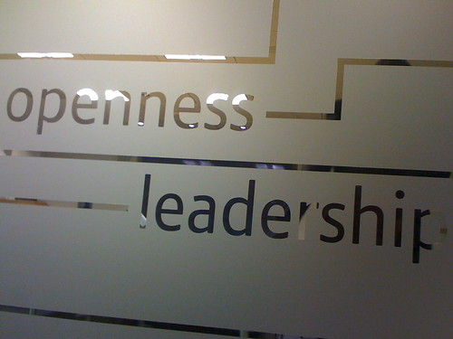 Openness => Leadership