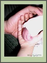 Glück, happiness, Szczescie, - Anja Egger Photography 2006 (♥Anja von Egger ♥) Tags: baby hands familie happiness glück anjaegger anjaeggerart digiartanja