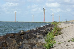 Oostvaardersdijk Almere (JK-P) Tags: almere windmolen tamron90f28 oostvaardersdijk sonya350