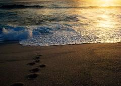 C H E R I S H (invictus2 (away)) Tags: ocean sea sunlight beach sunrise island morninglight sand waves time walk c pebbles nostalgia shore moment maldives atoll koolandthegang fuvahmulah cherish maldiveislands mywinners aplusphoto fuahmulah uniquemaldives paololivornosfriends clickingandenjoying gnaviyaniatoll