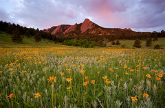 Chautauqua Park - Flatirons,  Boulder, Colorado (Lightvision []) Tags: park morning travel pink flowers light wild summer vacation sky sun mountain tourism beautiful field clouds sunrise season outdoors spring colorado university glow peace flat outdoor hiking vibrant famous landmark calm boulder sunflowers co getty environment wildflowers landsacape tranquil flatiron flatirons alpenglow irons chautauqua sigma1020mm muleears lightvision canonxsi willshieh