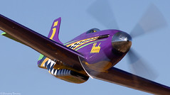 Voodoo (EverydayTuesday) Tags: speed aircraft nevada fast mustang reno 2009 voodoo warbird rara fenceline p51d stead airracing renoairraces canon70300is propblur canonef70300mmf456isusm race5 pylonracing canon40d willwhiteside nationalchampionshipairraces thegalleryoffinephotography valleyofspeed