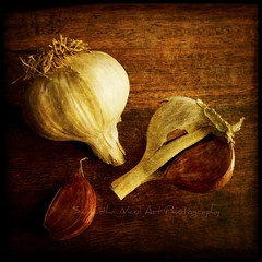 """Garlick maketh a man wynke, drynke, and stynke."" Thomas Nash, 16th Century poet (Samantha Nicol Art Photography) Tags: life wood food brown macro art texture bulb square table still nikon warm garlic samantha herb clove nicol lightpaintingwithatorch"