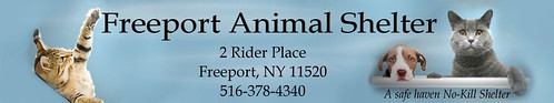banner for Freeport Animal Shelter, Amityville, Long Island, New York