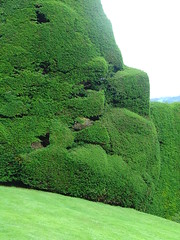 World's Most Fabulous Hedge (jannypanns) Tags: wales hedges powiscastle