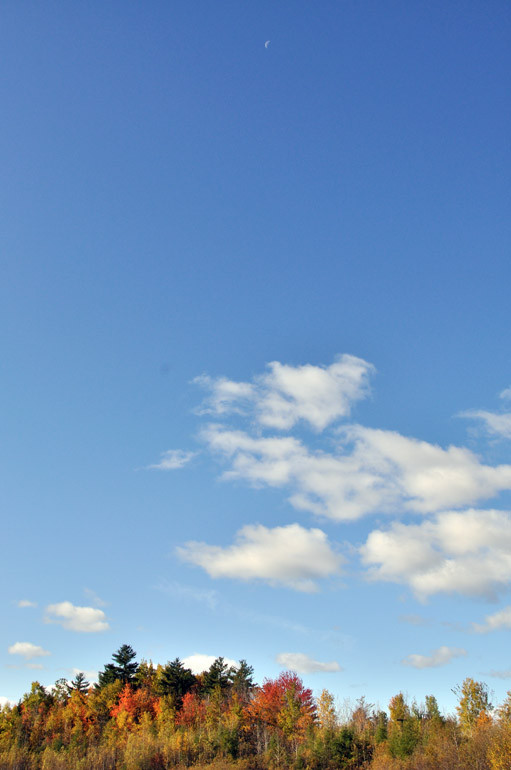 blue_sky_0021