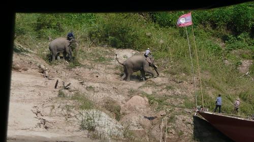 Laos 1 083
