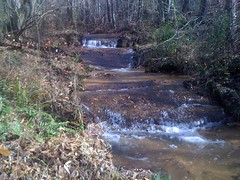 Tiny Falls on Cedar Creek Feeder Stream