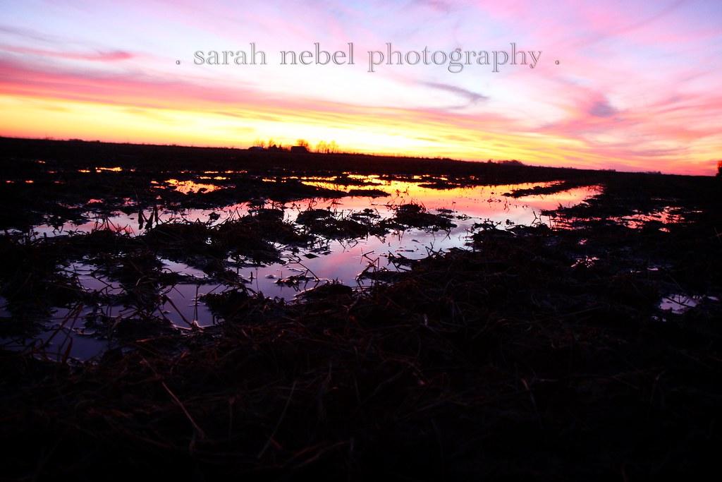. sunset .