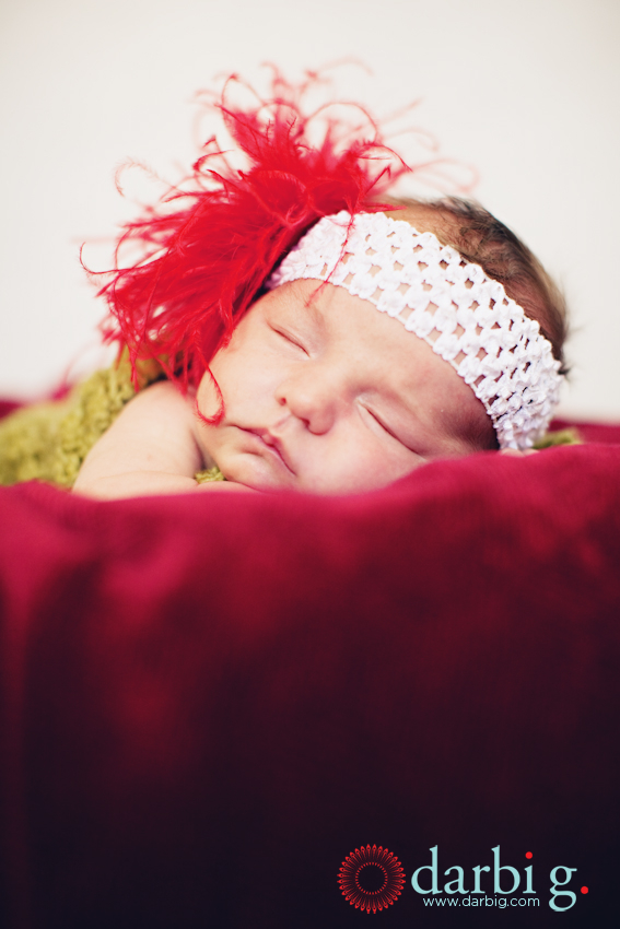 Darbi G Photography-Omaha-Kansas City-newborn-photographer-IGW-145