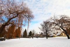 (Digital_trance) Tags: sunset white snow canada 20d vancouver sunrise canon landscape 300d canon300d britishcolumbia canon20d canoneos20d   canoneos300d vancouverbc     40d canoneos40d canon40d 5dmarkii 5d2 5dii canon5dmarkii eos5dmarkii canon5d2