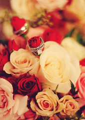 Rings and Roses (La Photographie Nashville) Tags: flowers wedding roses vintage saturated bokeh romance rings romantic