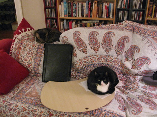 Letter-writing company on the couch