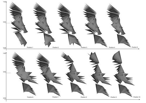Parametric Wing