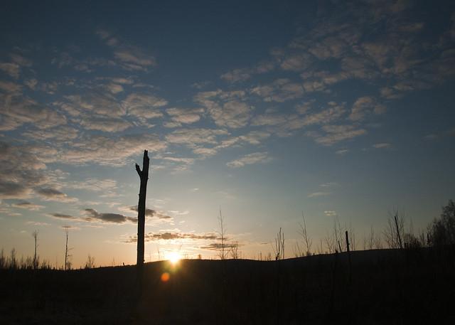 Desolate Sunset