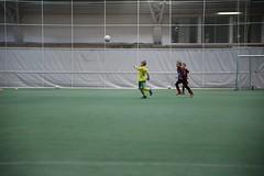 IMG_1620 (tindemus) Tags: ilves p08 värit jalkapallo hipposhalli