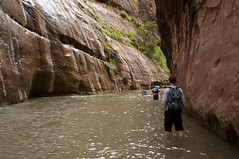 The Narrows (Zion Lodge, Utah, United States) Photo