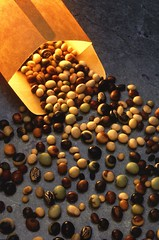 Varieties of soybeans