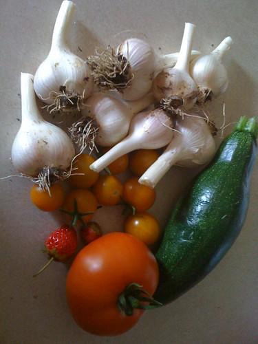 Garden Harvest 7/2/09