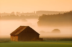GOOD MORNING BAVARIA (fuchsphoto) Tags: morning light mist nature hat silhouette fog landscape gold golden licht nebel im natur wide cottage htte hour landschaft wald distillery weite homepage mund dunst schleier goldenes morgenstund supereco worldsbestnikonshots landschaftatelierfuchs