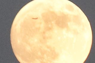216/365 - August 4, 2009 - Moon Spot
