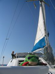 Rod on the Catamaran