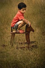 SAIF (irfan cheema...) Tags: china pakistan boy horse texture grass toy son saif crocs abigfave platinumphoto colorsofpakistan irfancheema familygetty2010