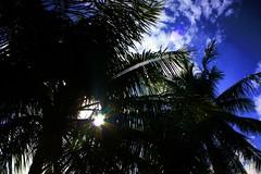 Hide n seek.. (K-I-R-@-N) Tags: sky sun 1855mm vizag kirn kitlense canon450d