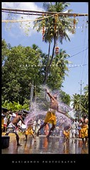 Reach the heights (harimenon4u) Tags: street india water festival power action shots pics religion kerala hindu jayanthi krisha uriyadi gurvayoor krishnaashtami