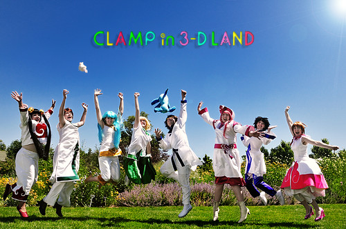 Clamp in 3-D Land