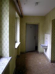 Pretty green wallpaper (Turukhtan) Tags: wallpaper seaside decay nazi ruin resort lovely rgen prora kdfbad