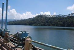 Sethuparvathipuram Dam, Munnar (ankyuk) Tags: dam kundala sethuparvathipuramkeralamunnarsouthindiaindiahillhillstation