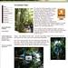 external image 4075088802_ae1ece5980_s.jpg
