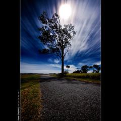 New Moon ([ Kane ]) Tags: road longexposure sky moon tree grass night clouds dark stars moody brisbane explore qld kane frontpage gledhill kanegledhill wwwhumanhabitscomau kanegledhillphotography