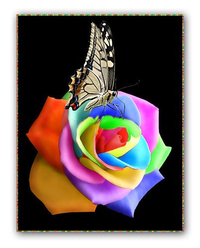 fantasy rose copy by Franomilano